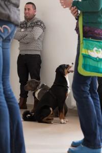 doggydate-4331