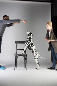 Doggy Date-romy-5055