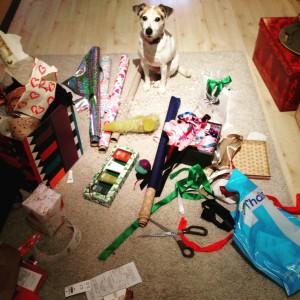 Doggy Date Weihnachtsgeschenke_2